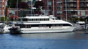 Photo of ORCA SPIRIT II ship