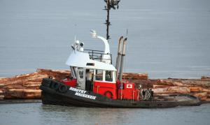 Photo of MV DOROTHY MACKENZIE ship