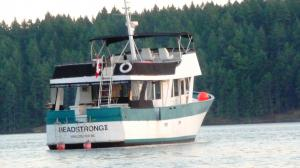 Photo of HEADSTRONG II ship