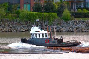 Photo of RIVER REBEL ship