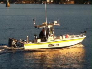 Photo of C-TOW GIBSONS ship