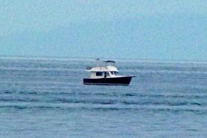 Photo of PANACEA V ship