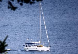 Photo of JOYRIDE ship