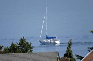 Photo of SV SEA MONKEY ship