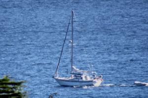 Photo of CORDIA ship