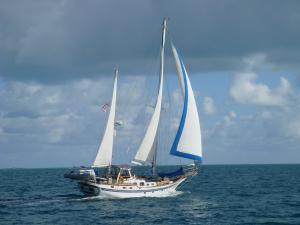 Photo of DRIVEN ship