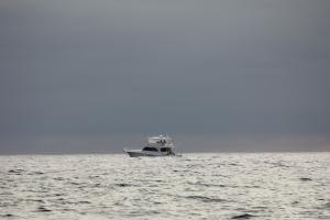 Photo of BLONDIE ship
