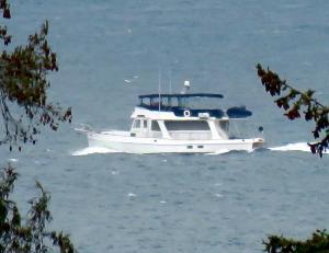 Photo of AVE DE PASO ship