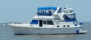 Photo of NIPPLE UP ship