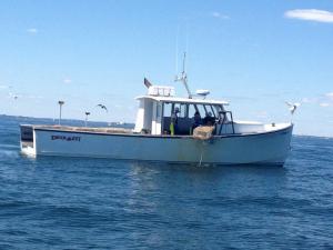 Photo of KNOCKOUT ship