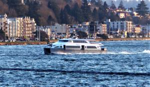 Photo of SALLY FOX ship