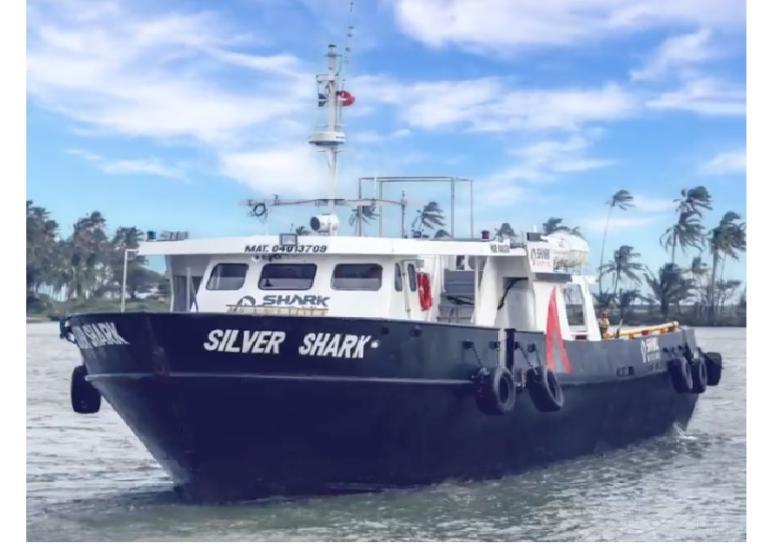 SILVER SHARK photo
