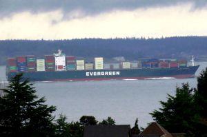 Photo of EVER SALUTE ship