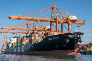 foto imbarcazione MSC LISA