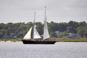 Photo of TABOR BOY ship