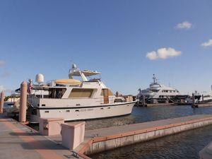 Photo of ODELIA ship