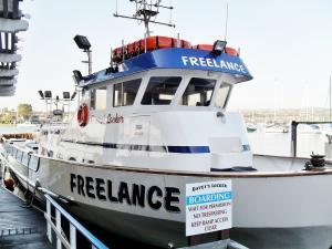 Photo of FREELANCE ship
