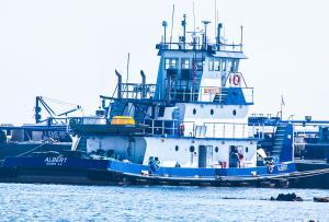 Photo of ALBERT ship