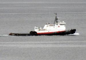 Photo of TUG POLAR KING ship