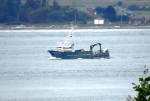 Photo of POLAR LADY ship