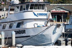 Photo of CONDOR ship