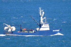 SEA STORM (IMO N/A) Photo