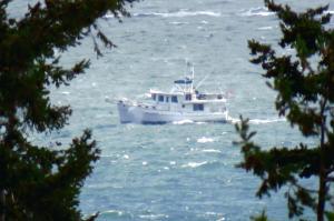 Photo of GRACE ship