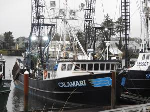 Photo of CALAMARI ship