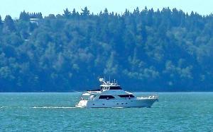 Photo of ARCTIC FOX ship
