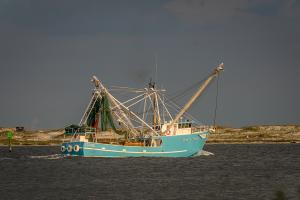Photo of FAMILY PRIDE ship