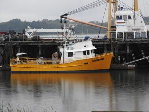Photo of FORERUNNER CLATSOP ship