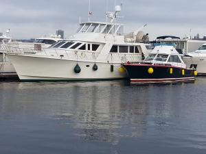 Photo of WATERSONG ship