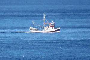 Photo of WONDERLAND ship