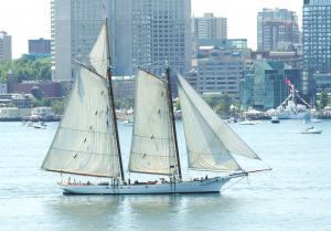 Photo of SPIRIT OF SOUTH CARO ship