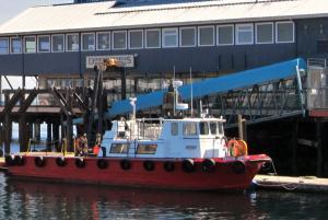 Photo of SEALTH ARROW ship