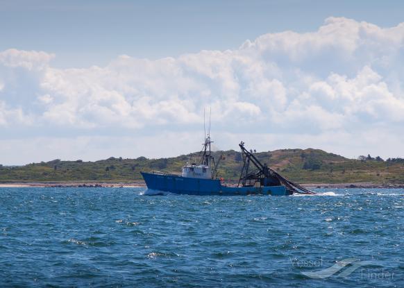 NEW SEA ROVER photo
