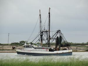 Photo of BLOOD & GUTS ship