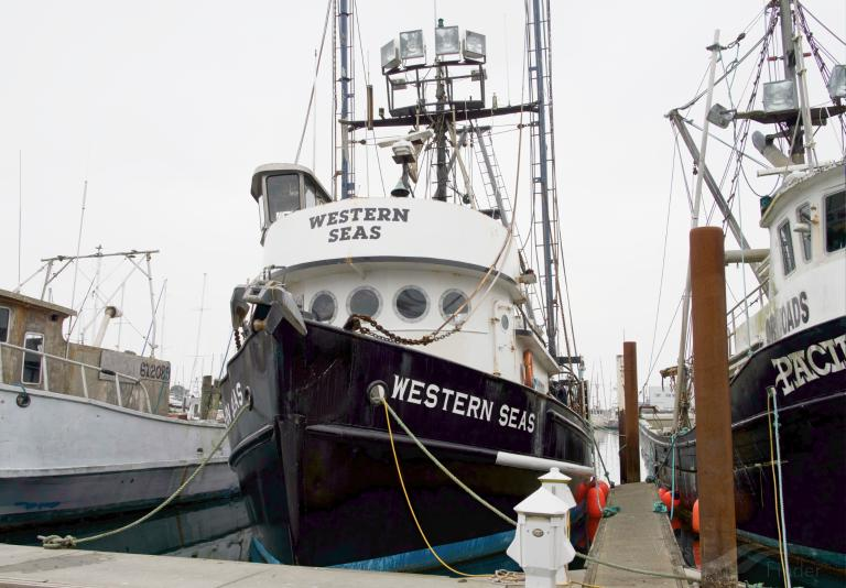 WESTERN SEAS photo