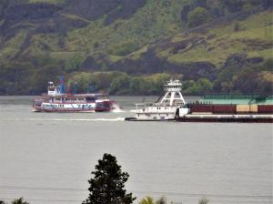Photo of COLUMBIA GORGE ship