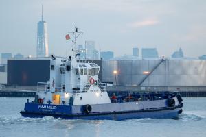 Photo of EMMA MILLER ship