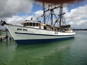 Photo of MISS OPAL ship