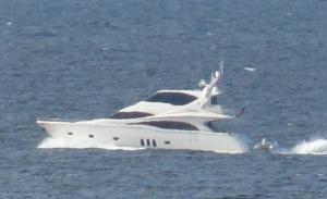 Photo of AZZURRE ship
