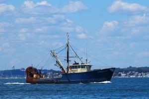Photo of MARIA JO-ANN ship