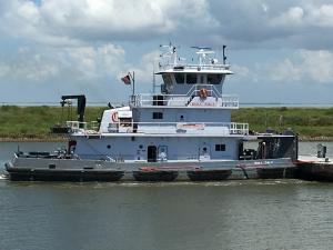 Photo of BULL CALF ship