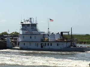 Photo of MARIAN HAGESTAD ship