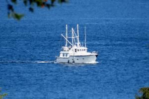 Photo of GREYWOLF ship