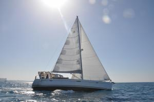 Photo of PETITE SIRAH ship