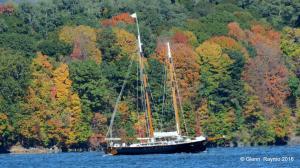Photo of AMERICA 2.0 ship