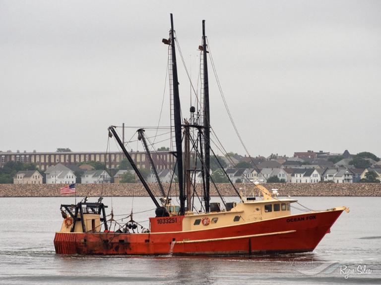 OCEAN FOX photo