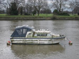 Photo of TEAM SUPREME ship